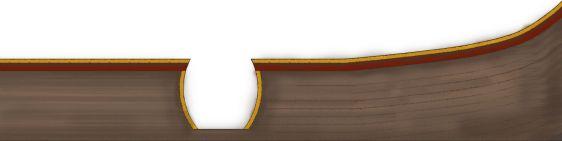 Hook's Ship-Gunwale- Elevation