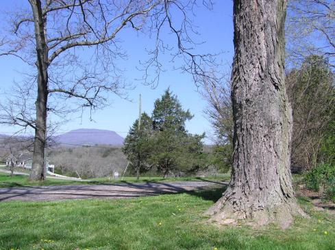 View of House Mountain from driveway
